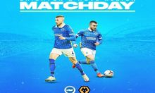 LINK LIVE STREAMING Brighton vs Wolves di Mola TV